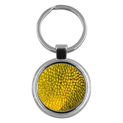 Jack Shell Jack Fruit Close Key Chains (round)