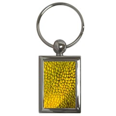 Jack Shell Jack Fruit Close Key Chains (rectangle)