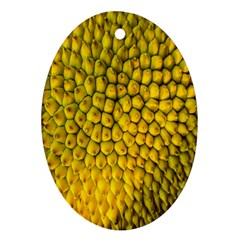 Jack Shell Jack Fruit Close Oval Ornament (two Sides)