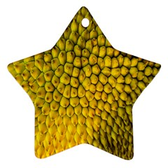 Jack Shell Jack Fruit Close Star Ornament (Two Sides)