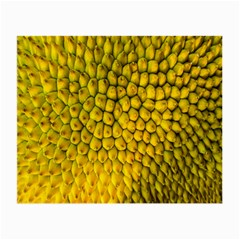 Jack Shell Jack Fruit Close Small Glasses Cloth (2 Side)