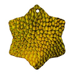 Jack Shell Jack Fruit Close Snowflake Ornament (two Sides)