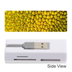 Jack Shell Jack Fruit Close Memory Card Reader (stick)