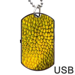 Jack Shell Jack Fruit Close Dog Tag Usb Flash (two Sides)