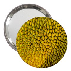 Jack Shell Jack Fruit Close 3  Handbag Mirrors