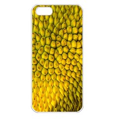 Jack Shell Jack Fruit Close Apple Iphone 5 Seamless Case (white)