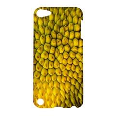 Jack Shell Jack Fruit Close Apple Ipod Touch 5 Hardshell Case