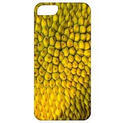 Jack Shell Jack Fruit Close Apple iPhone 5 Classic Hardshell Case