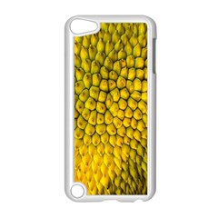 Jack Shell Jack Fruit Close Apple Ipod Touch 5 Case (white)