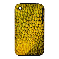 Jack Shell Jack Fruit Close Iphone 3s/3gs