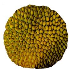 Jack Shell Jack Fruit Close Large 18  Premium Round Cushions