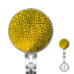 Jack Shell Jack Fruit Close Stainless Steel Nurses Watch