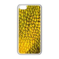 Jack Shell Jack Fruit Close Apple Iphone 5c Seamless Case (white)