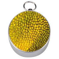 Jack Shell Jack Fruit Close Silver Compasses