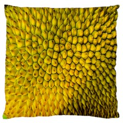 Jack Shell Jack Fruit Close Large Flano Cushion Case (one Side)