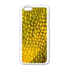 Jack Shell Jack Fruit Close Apple Iphone 6/6s White Enamel Case