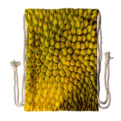 Jack Shell Jack Fruit Close Drawstring Bag (large)