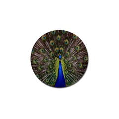 Bird Peacock Display Full Elegant Plumage Golf Ball Marker (10 pack)