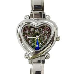 Bird Peacock Display Full Elegant Plumage Heart Italian Charm Watch