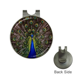 Bird Peacock Display Full Elegant Plumage Hat Clips With Golf Markers