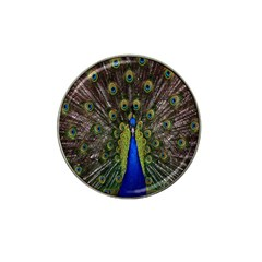 Bird Peacock Display Full Elegant Plumage Hat Clip Ball Marker (4 Pack)