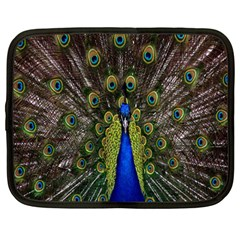 Bird Peacock Display Full Elegant Plumage Netbook Case (Large)
