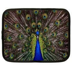 Bird Peacock Display Full Elegant Plumage Netbook Case (xxl)