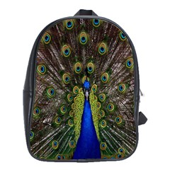Bird Peacock Display Full Elegant Plumage School Bags(large)