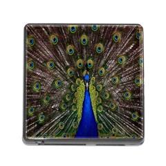 Bird Peacock Display Full Elegant Plumage Memory Card Reader (square)
