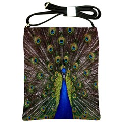 Bird Peacock Display Full Elegant Plumage Shoulder Sling Bags
