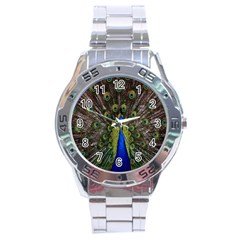 Bird Peacock Display Full Elegant Plumage Stainless Steel Analogue Watch