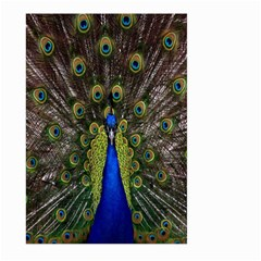 Bird Peacock Display Full Elegant Plumage Large Garden Flag (two Sides)