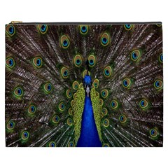 Bird Peacock Display Full Elegant Plumage Cosmetic Bag (xxxl)