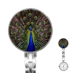 Bird Peacock Display Full Elegant Plumage Stainless Steel Nurses Watch