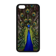 Bird Peacock Display Full Elegant Plumage Apple Iphone 5c Seamless Case (black)