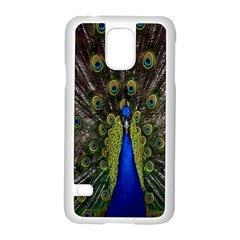 Bird Peacock Display Full Elegant Plumage Samsung Galaxy S5 Case (White)