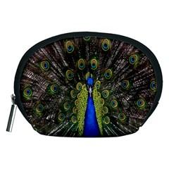 Bird Peacock Display Full Elegant Plumage Accessory Pouches (medium)
