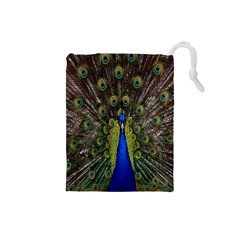 Bird Peacock Display Full Elegant Plumage Drawstring Pouches (small)