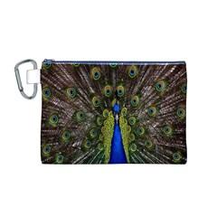Bird Peacock Display Full Elegant Plumage Canvas Cosmetic Bag (M)