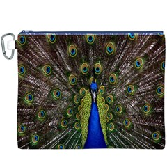 Bird Peacock Display Full Elegant Plumage Canvas Cosmetic Bag (xxxl)