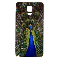 Bird Peacock Display Full Elegant Plumage Galaxy Note 4 Back Case
