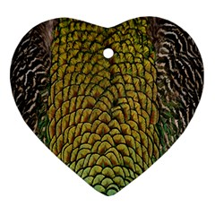 Colorful Iridescent Feather Bird Color Peacock Ornament (Heart)