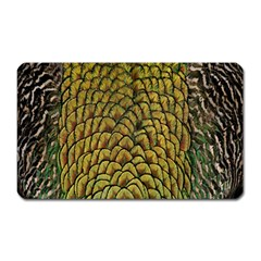 Colorful Iridescent Feather Bird Color Peacock Magnet (rectangular)