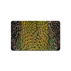 Colorful Iridescent Feather Bird Color Peacock Magnet (Name Card)