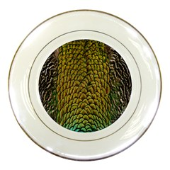 Colorful Iridescent Feather Bird Color Peacock Porcelain Plates
