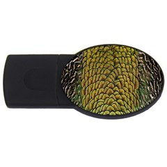 Colorful Iridescent Feather Bird Color Peacock Usb Flash Drive Oval (4 Gb)