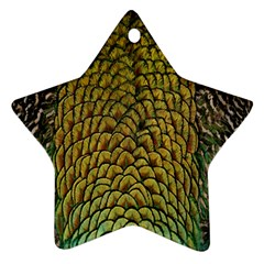 Colorful Iridescent Feather Bird Color Peacock Star Ornament (two Sides)