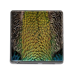 Colorful Iridescent Feather Bird Color Peacock Memory Card Reader (square)