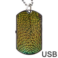 Colorful Iridescent Feather Bird Color Peacock Dog Tag Usb Flash (one Side)