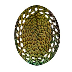 Colorful Iridescent Feather Bird Color Peacock Ornament (Oval Filigree)